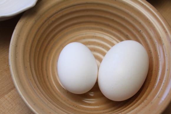 Eggz2